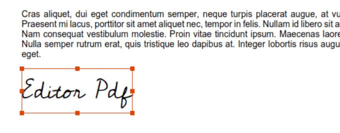 Nitro PDF